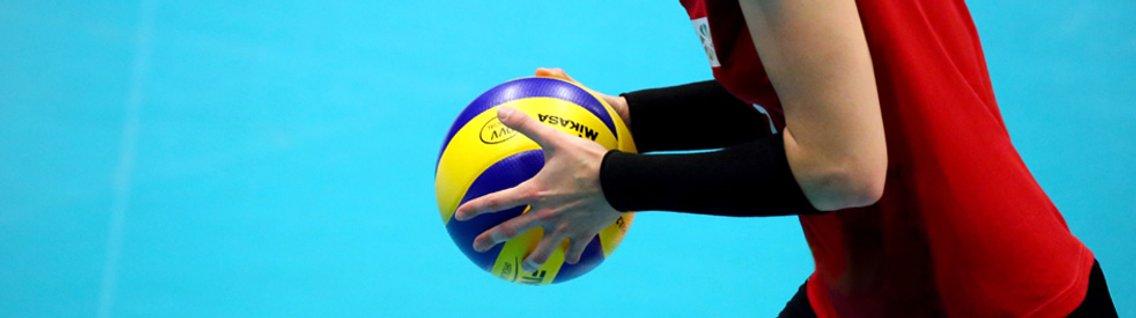 Allenatori di Pallavolo - Allenare Volley - Cover Image