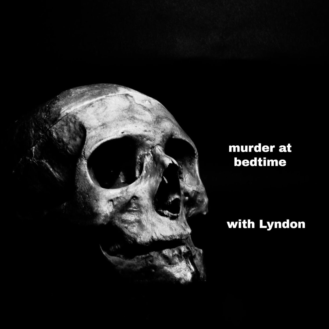 Murder at bedtime with Lyndon - Cover Image