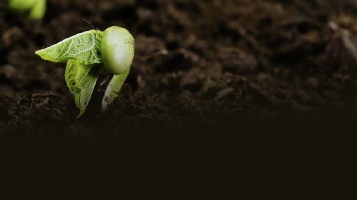 Le news di Re Soil Foundation - Cover Image