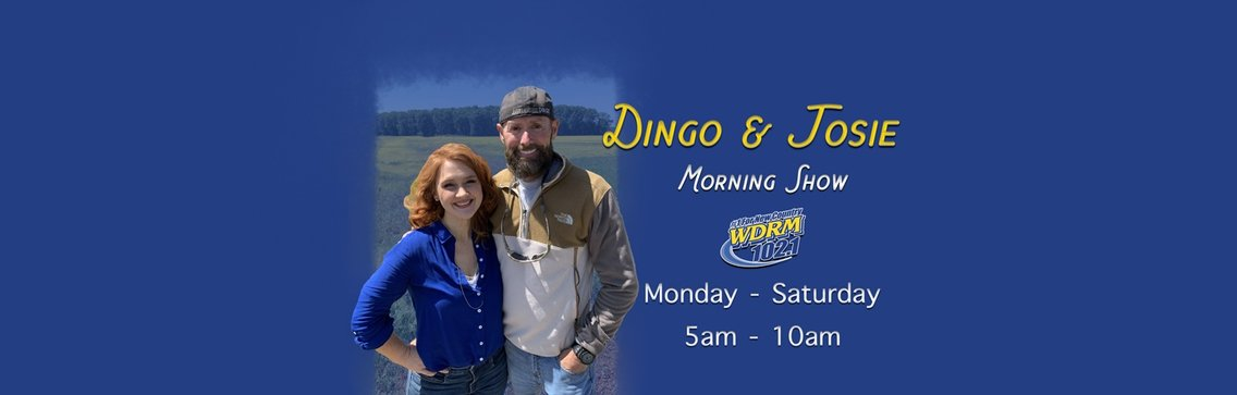 Dingo & Josie's Rewind - immagine di copertina